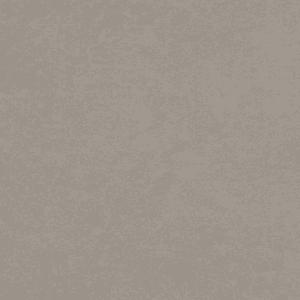 CORETEC CERATOUCHUSTICA LIGHT GREY 30,5 x 61,0 CM